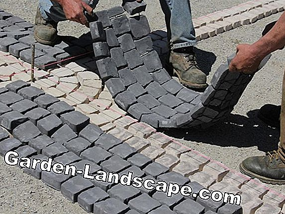 Lay paving stones (cobblestones) yourself