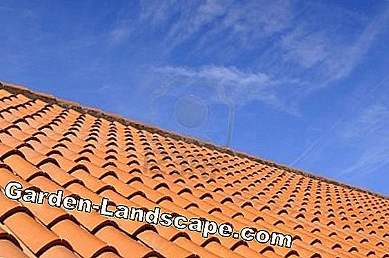 Prices for roof tiles