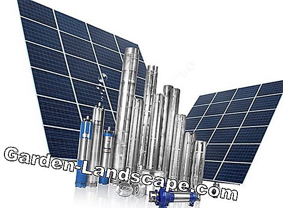 Promotion of solar systems and solar energy