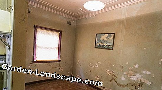 Avoid rising damp in houses
