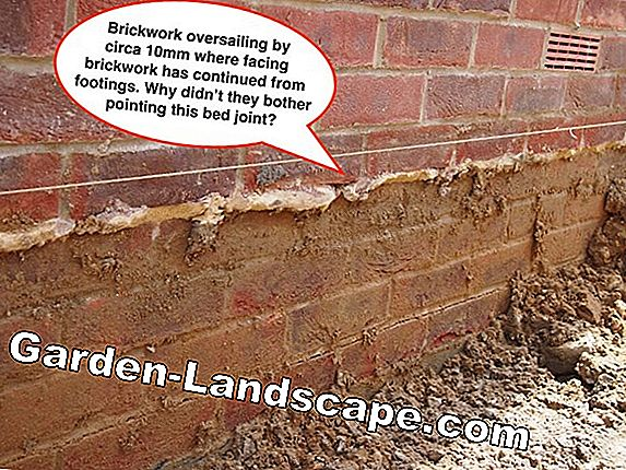 Rising moisture in the brickwork