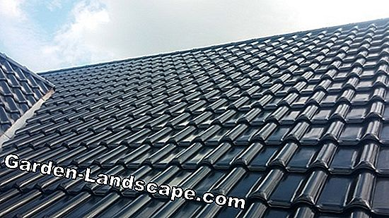 Roof tiles by Creaton