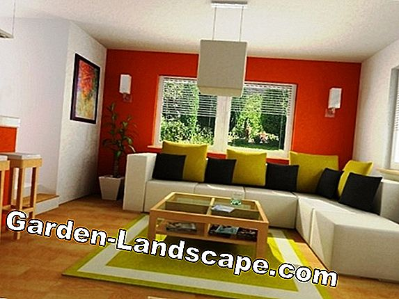 Room design with color - suitable colors and combinations