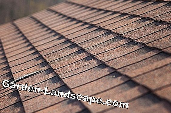 Shingles made of wood