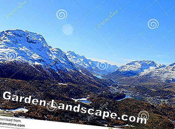 The silent Engadin