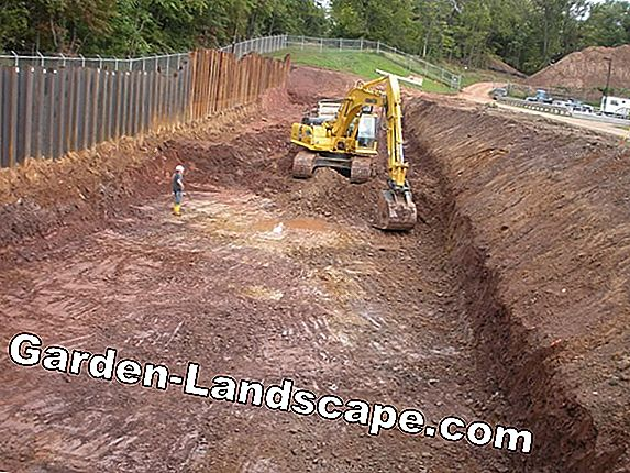 Excavation - Cost of excavation and disposal