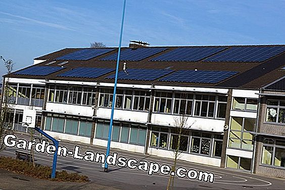 Solar Energy in Germany - Trends and Developments