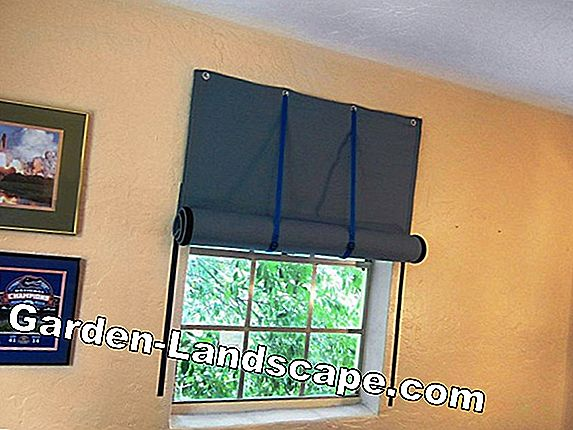 Soundproofing for windows