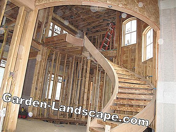 Wooden spiral staircases - prices, calculation
