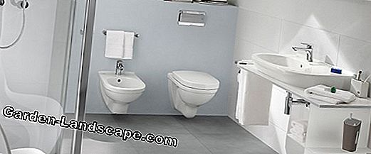 Stand WC - the classic