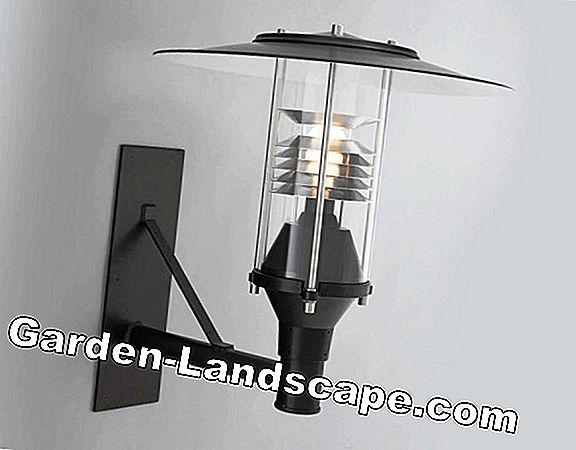 Suitable lamps for ceiling lights