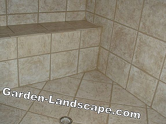 Clean tile joints - permanent cleaning