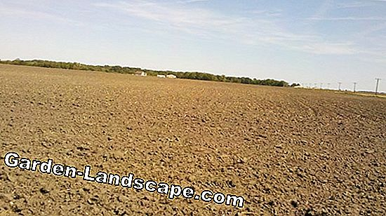 Tillage and soil care