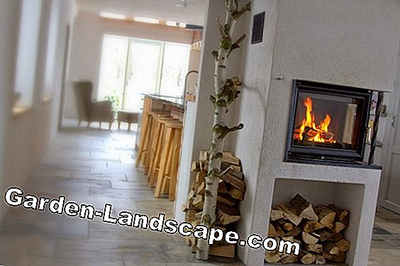 Water-bearing fireplace insert - costs & experiences