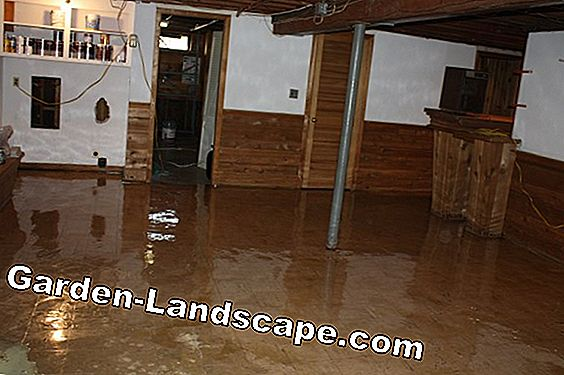 Water damage restoration - costs of a renovation