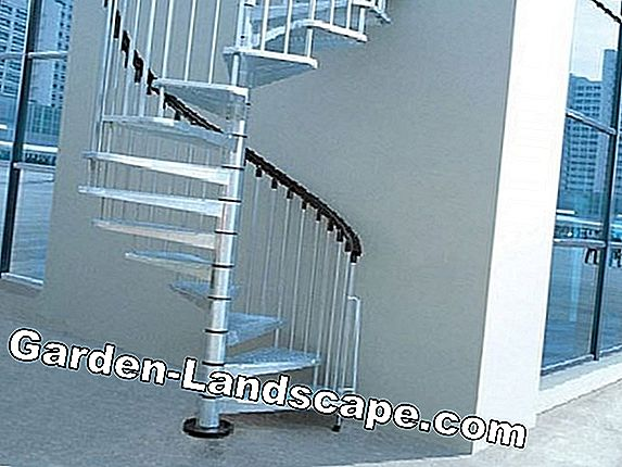 Wooden staircase - Prices & Costs