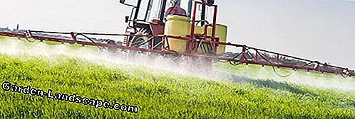 Pesticides - that's what the trade offers