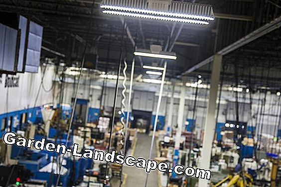 Everything about LED plant light: Building plant lighting yourself