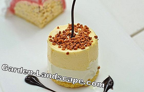 Recipe idea: raspberry parfait with almond biscuit base