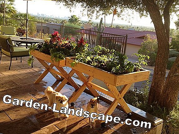 Gardening comfortably: gardening tools for the raised bed