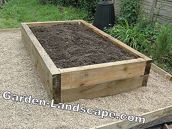 2 Raised beds by myGardenlust to win