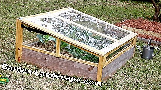 Create cold frame yourself and instructions for planting