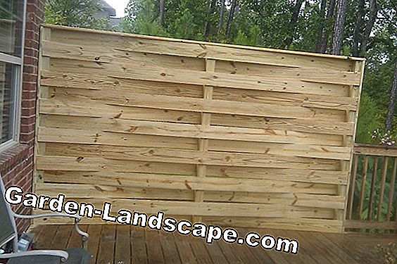 Bamboo roller fence as privacy screen - variants and costs - bamboo fence