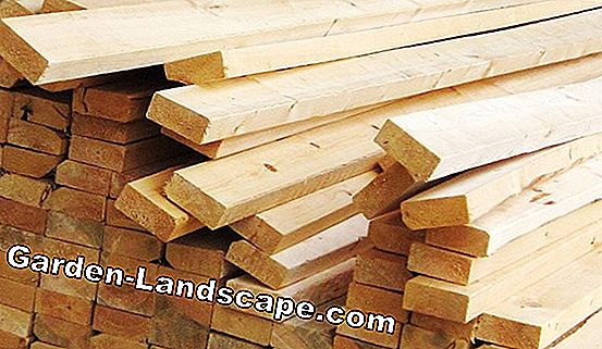 Bankirei wood - prices & use as decking