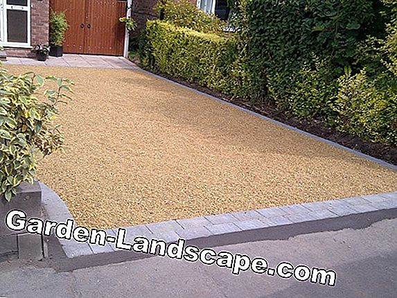 Lawn paving & Lawn paving stones - Laying & Prices