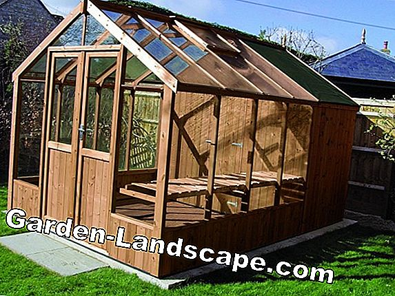 Greenhouse heating - costs, advantages and disadvantages