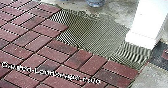 Instructions for laying patio tiles