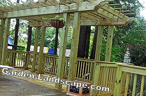 Pergola - Building, information and more