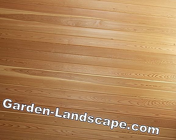 Wooden deck of Douglas fir or larch