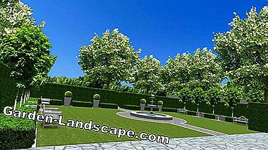 Landscaping software gratuito per la progettazione del giardino