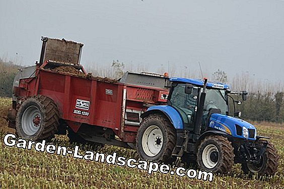 Blue Grain Fertilizer - producten en samenstelling