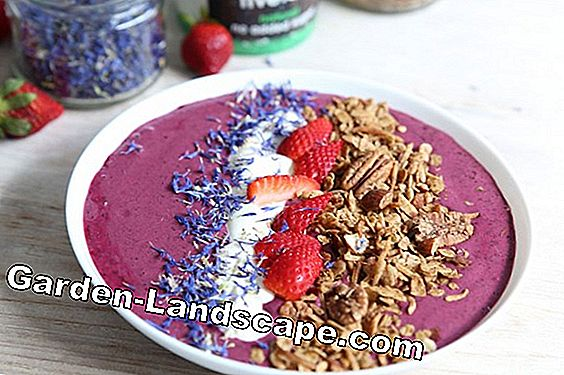 Raspberry-smoothie met citroenverbena