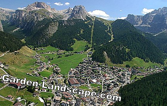Summer on the Alm: Life on the Sennalpe