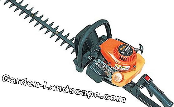 Win Battery Hedge Trimmer en kettingzaag van Black + Decker