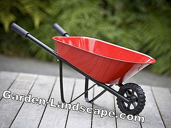 Wheelbarrows & Co.: Transportmiddelen voor de tuin