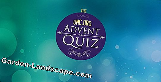 Advent quiz: vinnarna