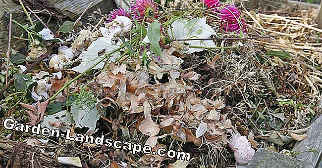 Odor nuisance through compost heaps
