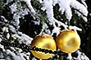 Christmas decoration in the garden - 3 tips: decoration