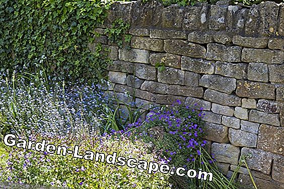 Garden wall made of natural stone - instructions & costs