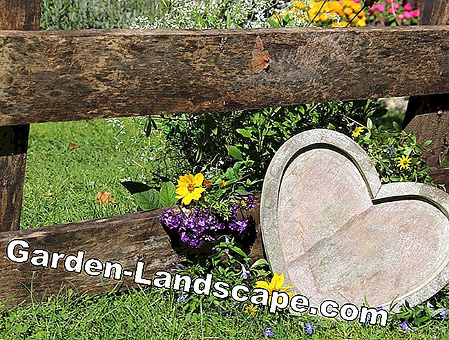 Rustic Garden Decorations - Inspirations and Ideas for the Rugged Look