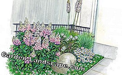Perennial flowerbed with boulders