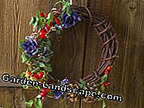 Tie a wreath: Christmas