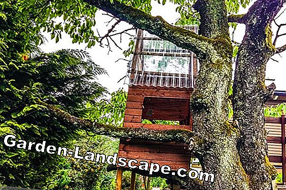 Treehouse for children