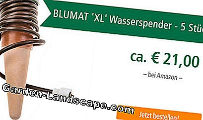 Dispensador de agua Blumat XL