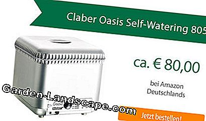 Claber Oasis Self-Watering System 8053