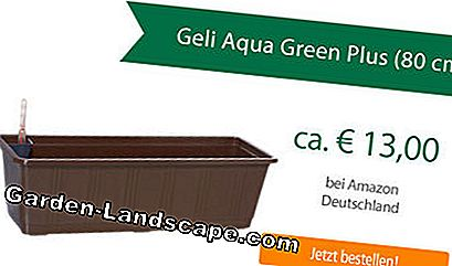 Geli Aqua Green Plus